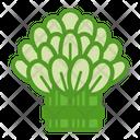 Leafy Green Foliage Icon