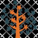 Leafy tree Icon