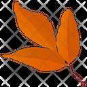 Leafy Twig Autumn Leaves Leaf In Fall Icon