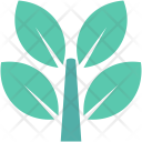 Leaves Twigs Ecology Icon