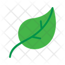 Leaves Leaf Green Leaf Icon