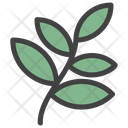 Leaves Herb Shrub Icon