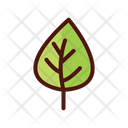 Leaves Nature Spring Icon