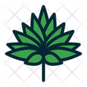 Leaf Leaves Tropical Leaves Icon