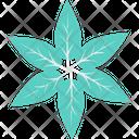 Leaves Leaves Flower Greenery Icon
