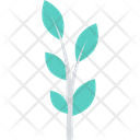 Leaves Leaves Twigs Ecology Icon