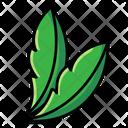 Leaves Botany Nature Icon