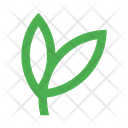 Leaves Branch Icon