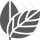 Two Leaves Leaf Icon