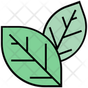 Summer Leaves Green Icon