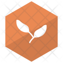 Leaves Ecology Green Icon