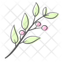 Leaves Branch Berry Icon