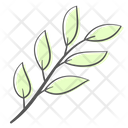Leaves Branch Plant Icon