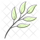 Leaves Plant Nature Icon