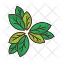 Leaves Thicket Icon