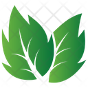 Leaves Design Icon
