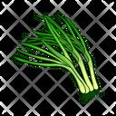 Leek Plants Green Icon