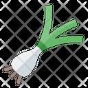 Leek Onion Garlic Icon