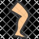 Leg Body Organ Body Part Icon