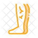 Leg Varicose Veins Icon