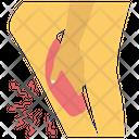 Leg Bleeding Icon