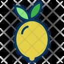 Vegetable Organic Food Icon