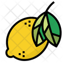 Fruit Lemon Organic Icon