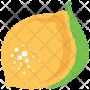 Lemon Fruit Lime Icon
