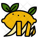 Lemon Peel Smell Icon