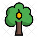 Lemon Tree Plant Icon