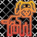 Leonberger Dog Icon