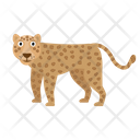 Leopard Animal Zoo Icon