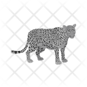 Leopard Animal Wildlife Icon