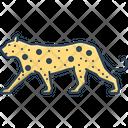 Leopard Carnivorous Cheetah Icon