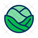 Cabbage Food Leaf Icon