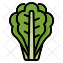Vegetable Food Vegetarian Icon