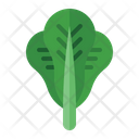 Lettuce Health Vegetarian Icon