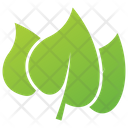 Lilac Leaf Design Icon