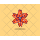 Lily Spring Flower Agriculture Icon
