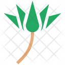 Lily Lotus Flower Icon