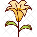 Lily Flower Nature Icon