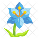 Lily Flower Blossom Icon