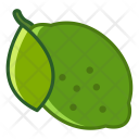 Lime Fruit Fit Icon