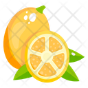 Lime Fruit Healthy Food Icon