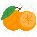 Lime Fruit Healthy Icon