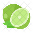 Lime Fruit Diet Icon