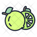 Lime Fruit Food Icon