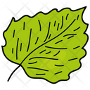 Lime Leaf Leaf Foliage Icon