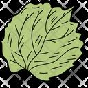 Linden Leaf Leaf Foliage Icon