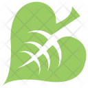 Linden Leaf Icon